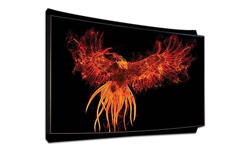3D-Tek Phoenix